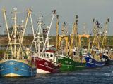 Helgolandkai: projet pilote BIM dans la construction portuaire